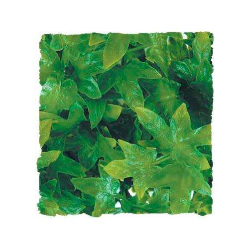 Plantas artificiais: Hera do Congo