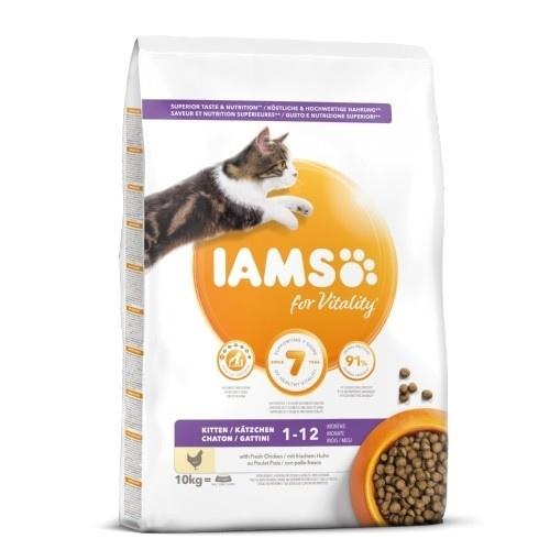 IAMS Kitten