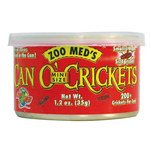 ZOOMED can o´crickets mini grilos