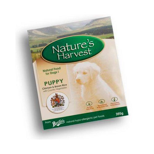 Nature's Harvest Puppy RaÇao humidade com Frango