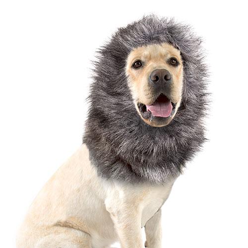 Peruca para cães cor cinzenta e preta 40 cm