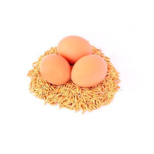 ração 95 % ecológico para galinhas