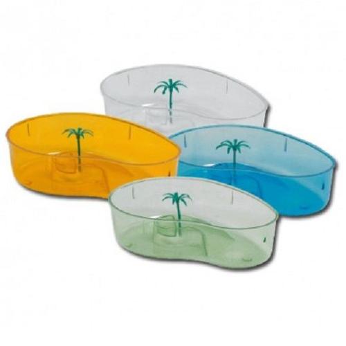 Recinto para tartaruga rim com palmeira