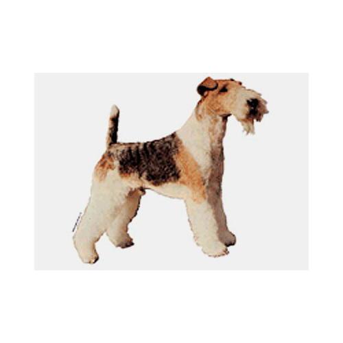 Autocolantes e porta-chaves: Fox Terrier