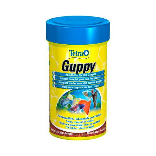Tetra Guppy