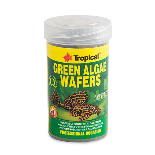 Tropical Green Algae Wafe Espirulina em Tabletesrs
