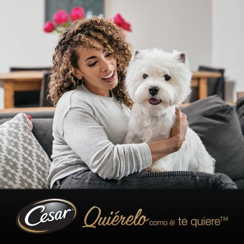 Comida húmida para cães César Multipack Garden
