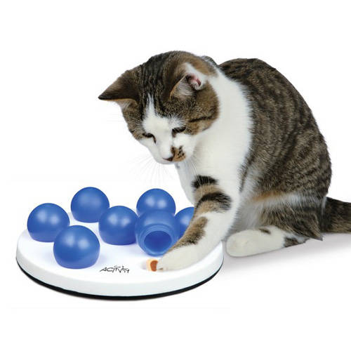 Jogo de inteligência para gatos Cat Activity Solitario