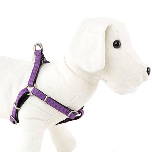 Arnês para cães MacLeather Classic Color lilás