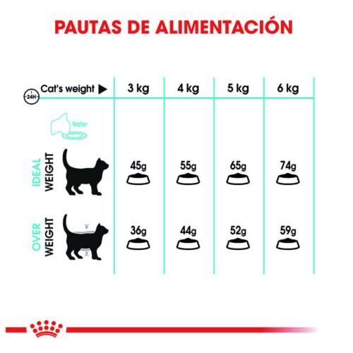 Royal Canin Urinary Care Ração para gatos