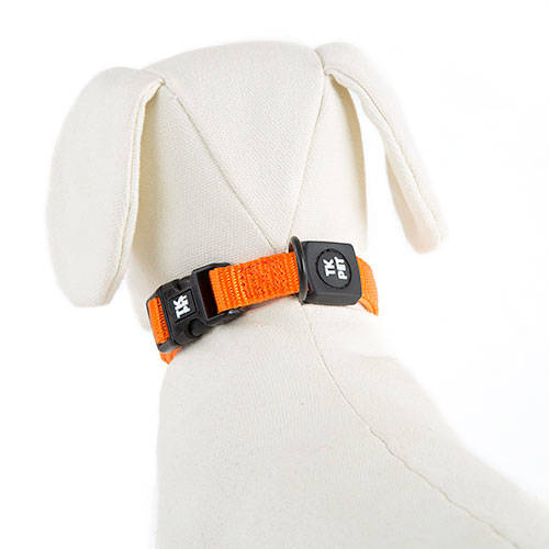 Coleira para cães TK-Pet Neo Classic cor de laranja de nylon e neopreno