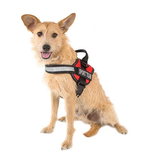 Arnês para cães ergonómico TK-Pet Himalaya