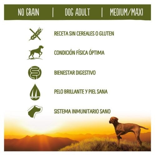 Ração para cães adultos True Instinct No Grain Medium - Maxi com salmão