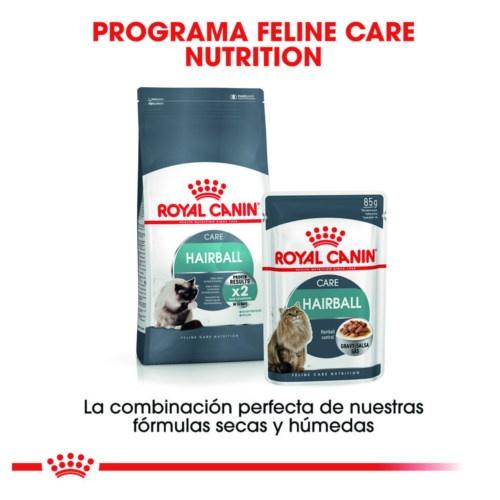 Royal Canin Hairball Care alimento húmido em molho para gatos