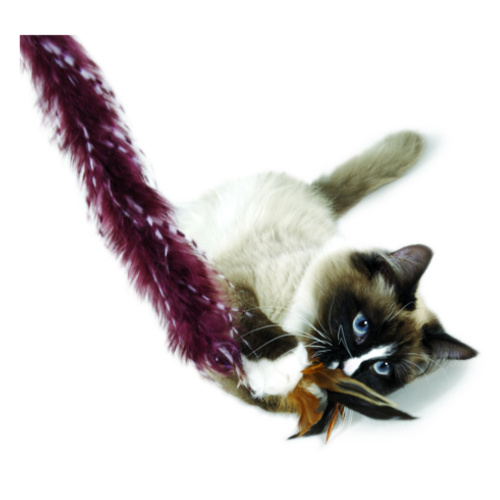 Vara com penas para gatos extralongas Plume Crazy