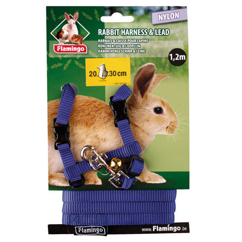 Arnês de nylon com trela para coelhos