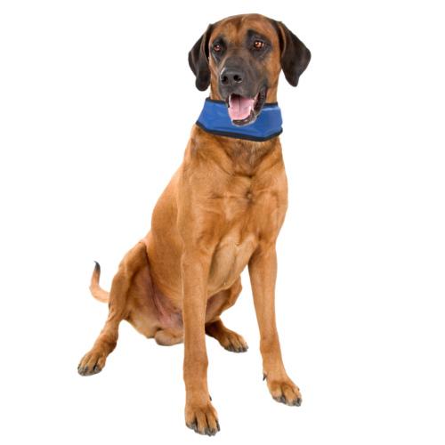Coleira refrescante para cães Fresk