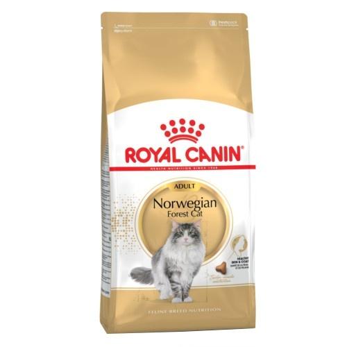 Royal Canin Floresta de Noruega ração para gatos