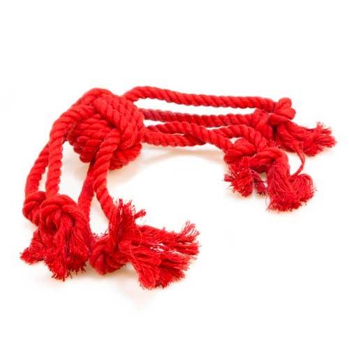 Brinquedo de várias cordas TK-Pet Octopus