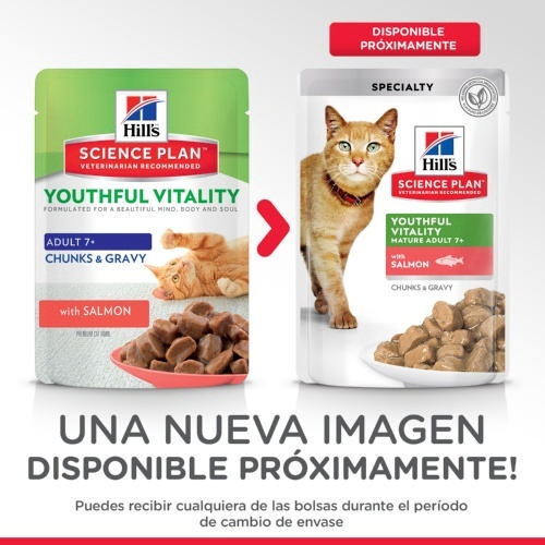 Hill's Youthful Vitality húmido para gatos com salmão