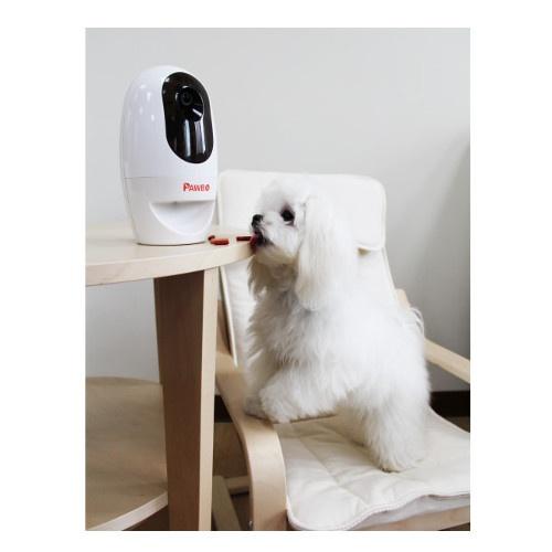 Câmara para animais de estimação Pawbo com dispensador e laser
