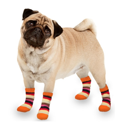Meias para cães multicolor