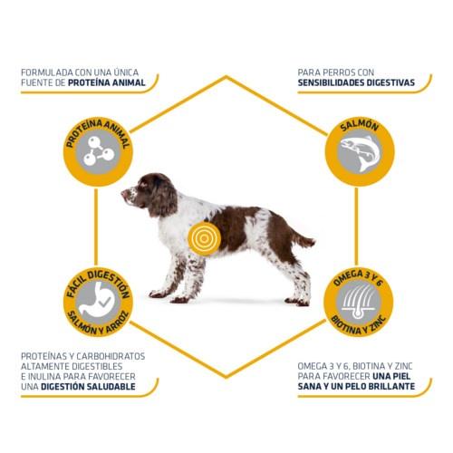 Advance Sensitive para cães