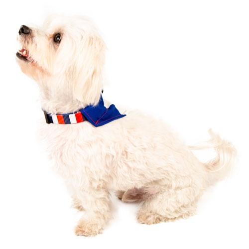 Lenço para cães TK-Pet França