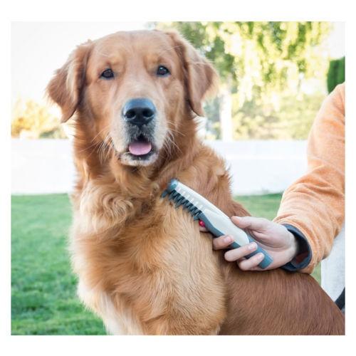 Pente corta nós elétrico para cães