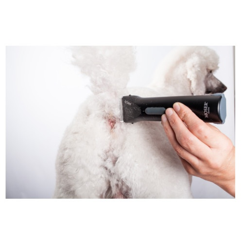 Máquina corta-pelo para cães Moser Arco