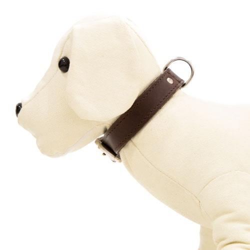 Coleira de couro para cães Namur castanha