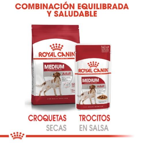 Comida húmida Royal Canin Medium Adult