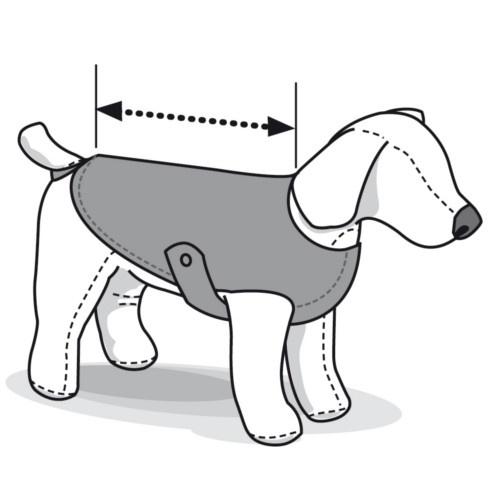 Body de proteção para cães