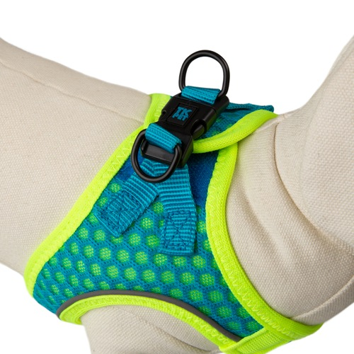 Peitoral de alta visibilidade TK-Pet Easy Click azul