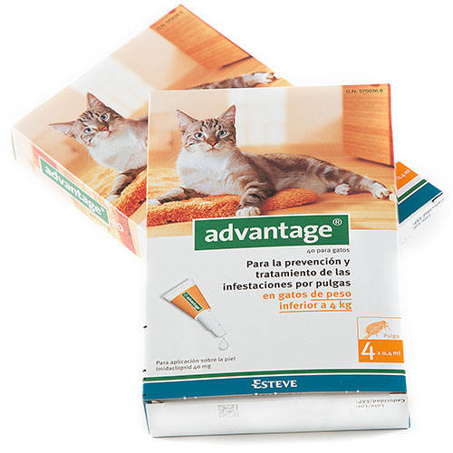 Pipeta anti-pulgas para gatos Advantage