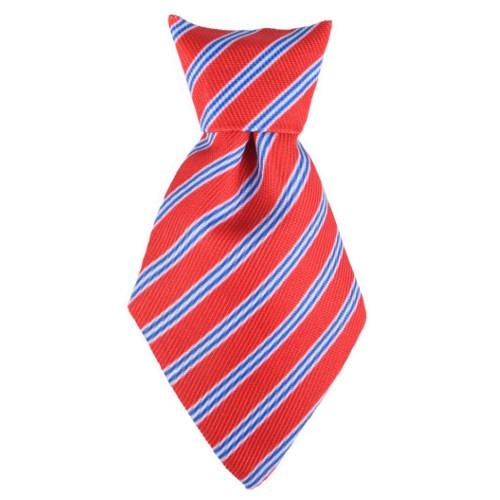 Gravata-borboleta e gravata para cães