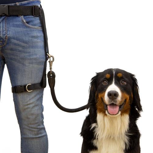 Acople perna cinto multiusos TK-Pet