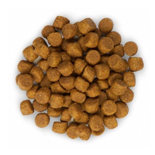 Hill's Canine Puppy Healthy Development Cordeiro y arroz