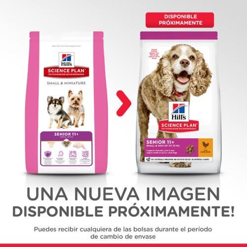 Hills Canine Senior com Frango Mini
