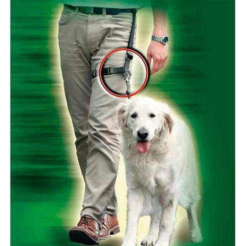 Trela para ensinar a caminhar os cães