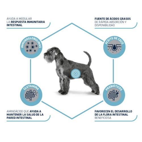 Advance Gastro Enteric Canine