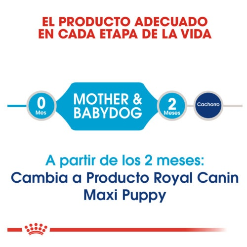 Royal Canin Starter Puppy Maxi