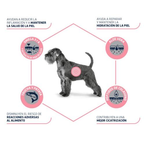 Advance Atopic Care Canine