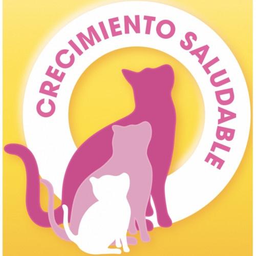 Friskies gato Junior com Frango, Peru e Verduras