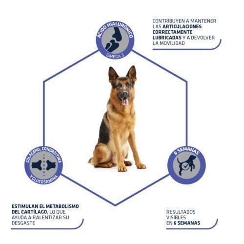 Advance Articular Stick sanck com condroprotector para cães