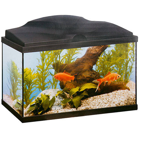 Aquário Ciano Aqua 60 Plus light